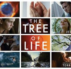 Deciphering <i>The Tree of Life</i>
